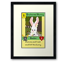 Enchanted Bunny - The Big Bang Theory Framed Print