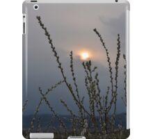 Willow buds in twilight zonw iPad Case/Skin