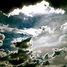 grey in the silver lining  by bron stadheim