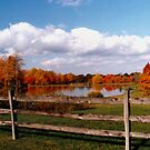 070506-44  OHIO AUTUMN by MICKSPIXPHOTOS