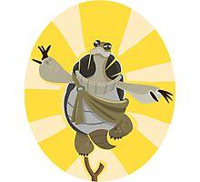 Master Oogway - Kung Fu Panda Photographic Print