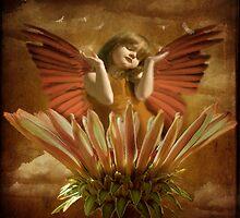 Carpe Diem by Anji Johnston