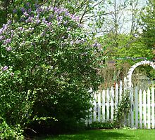 Country Gate by Bea Godbee