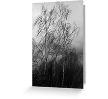 Trees in the wind Greeting Card