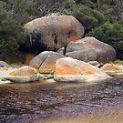 Tidal River by Leanne Nelson