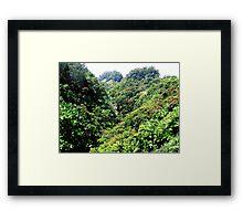 Roadside Hawaiian Waterfall Framed Print