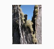 Lichen on a tree stump, Cradle Mountain, Tasmania, Australia. Unisex T-Shirt