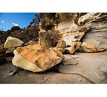 Bruny Island Rock Life Photographic Print