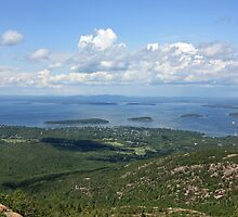 Bar Harbor by Rebecca Brann