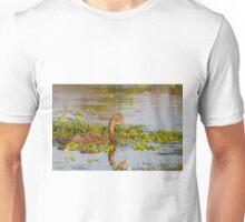 Dusk Cygnet Unisex T-Shirt