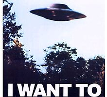 X FILES - I want to believe by BEGROTESQUE