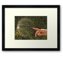 Just Popped Bubble Framed Print