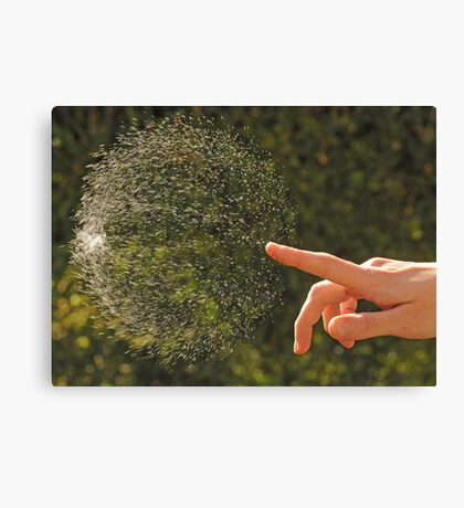 Just Popped Bubble Canvas Print