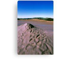 muddy volcanoes Canvas Print