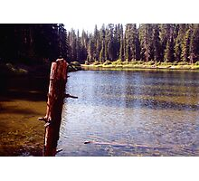 Kelly Lake Photographic Print