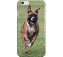 American Bulldog x Staffy iPhone Case/Skin