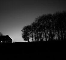 In to woods  by Jonas Kroyer