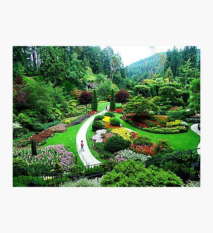Butchart's Gardens Photographic Print