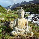 Buddha by a Mountain Stream - Switzerland by Caroline Webb