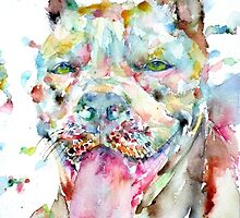 WATERCOLOR PIT BULL by lautir