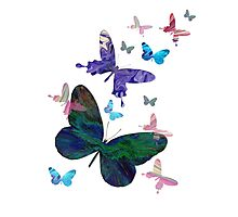 butterfly design Photographic Print