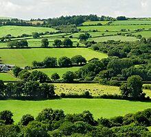 Farmland View by lightmonger