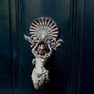 Elegant door knocker by bubblehex08