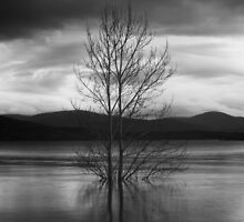 Lake Jindabyne No.4 by Syd Winer