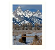 Grand Teton & Irrigation Ditch Art Print