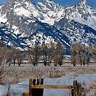 Grand Teton & Irrigation Ditch by A.M. Ruttle