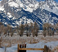 Grand Teton & Irrigation Ditch by A.M. Ruttle