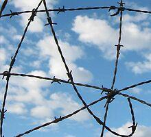 Fenced in sky by LisaDuniam