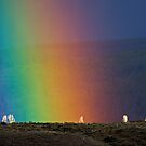 Rainbow Air, Ghost Trees by A.M. Ruttle