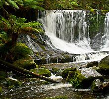 Winter Oasis - Horseshoe Falls, Mt. Field, Tasmania by TraceyLea