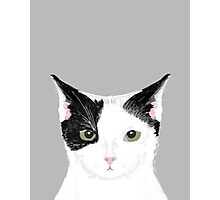 Manny - Black and white cute cat gift cat person cat lady funny cat meme pet portraits customizable  Photographic Print