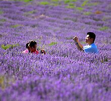 Tourists in Lavender by Rick  Senley