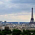 Paris and The Eiffel Tower 2 by MaluC
