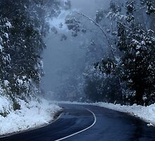 Mt Donna Buang by KeepsakesPhotography Michael Rowley