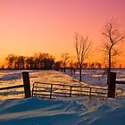 Fencepost Sunset by Emily Hild