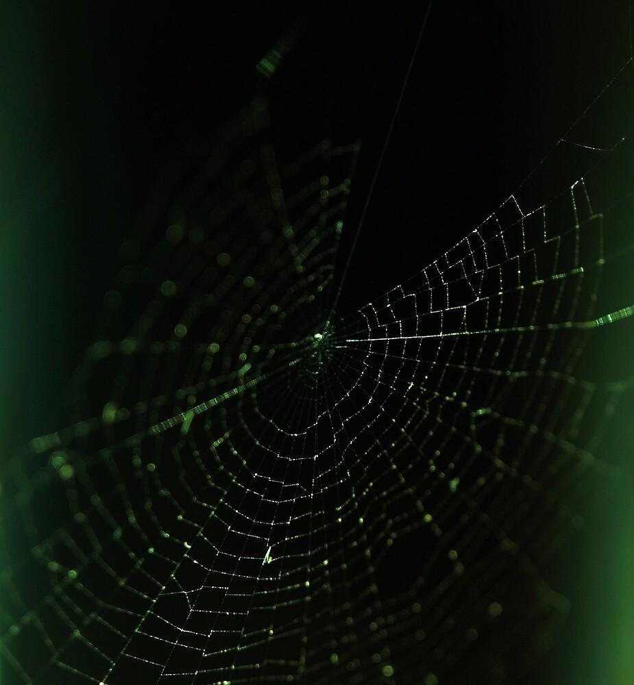web by Acia Lo