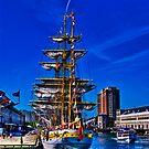 Sail Boston - Mircea ( back view) by LudaNayvelt
