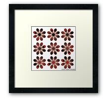 Faded Foot Flowers Framed Print