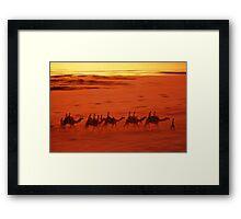 Broome Camels Framed Print