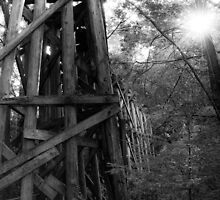 Abandoned Trestle B&W by Appel