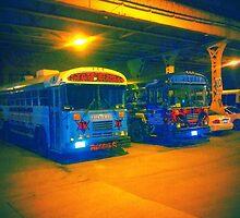Reggie's bus's by LMRPhoto
