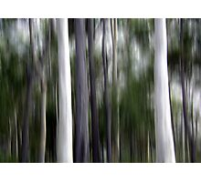 Ghost Gums Photographic Print