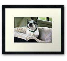 I Hate to Be a Bother Framed Print