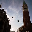 sanmarco looking high above by damonvm
