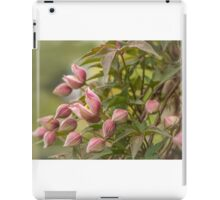 Clematis in bud iPad Case/Skin