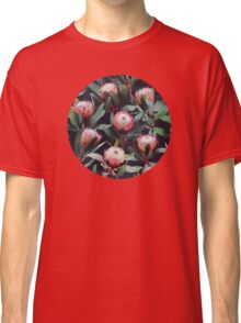 Evening Proteas - Pink on Charcoal Classic T-Shirt